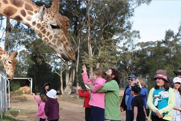 Sở thú Taronga