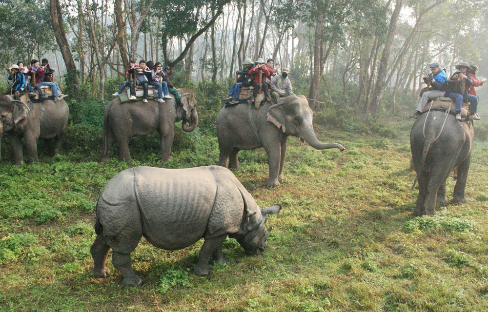 vườn quốc gia Chitwan